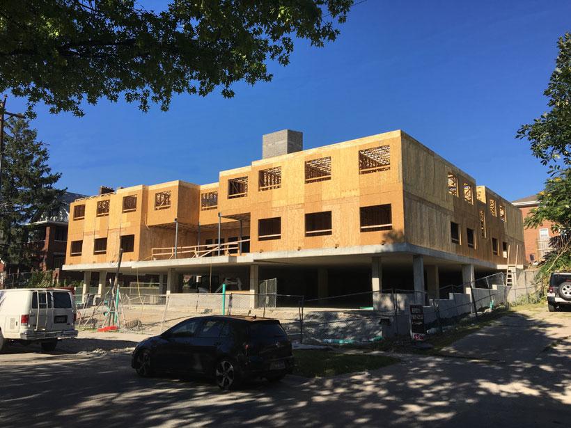 """Higher"" Education (A Stratford Avenue Update)"